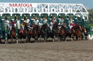 saratoga starting gate