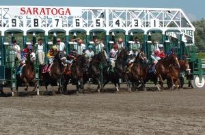 saratoga starting gate